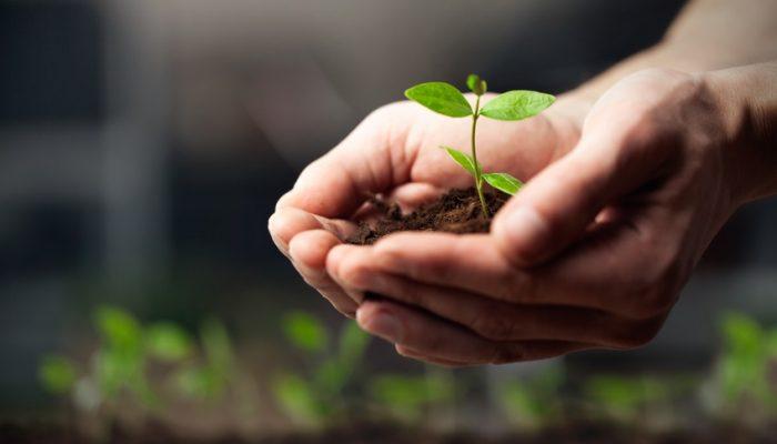 Cultivons l'optimisme pour libérer l'audace et bâtir demain